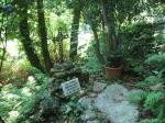 Croce sul luogo dove  fu ucciso don Menguzzo 002 lapide nuova